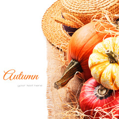 Autumn setting with harvested pumpkins