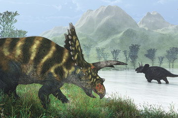 Dinosaur Shore