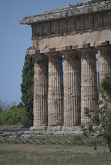 Details of the ruins of Paestum