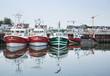 Bateaux de Pêches Le Tréport - 69104435