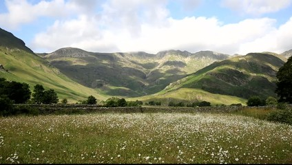 Langdale Valley Lake District Daisy field mountains blue sky