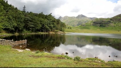 Blea Tarn and langdale pikes Lake District Cumbria UK