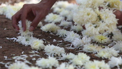 Brahmin lays flowers at the Indian ceremony