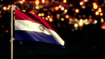 Paraguay National Flag City Light Night Bokeh Loop Animation