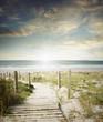 Beach view - 69106492