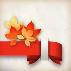 Autumn Vector Fall Leaves Card