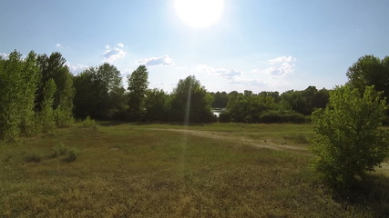 Evening  flight over  field and trees  . Aerial view
