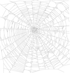 square black spider web illustration