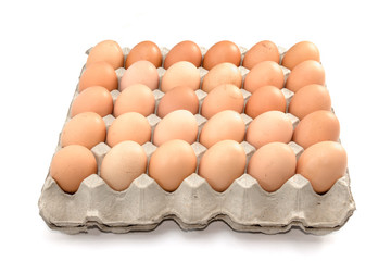 Eggs in paper tray on white background