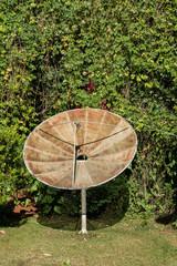parabolic in a garden