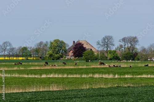 canvas print picture Norddeutsche Landschaft mit einem alten Haubarg