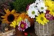 canvas print picture - Herbstblumen
