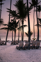 Beautiful tropical beach with silhouettes of palm trees at