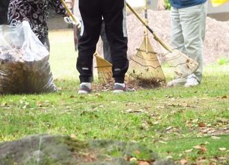 公園の落ち葉を集める