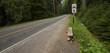 Rural Bus Stop - 69119885