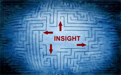Insight maze concept