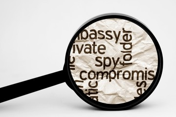Search for spy
