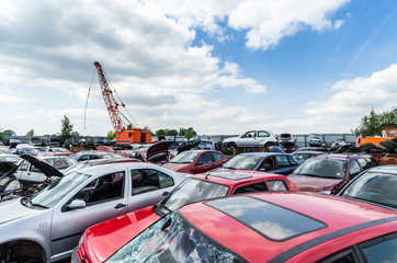 Destroyed cars at a junkyard