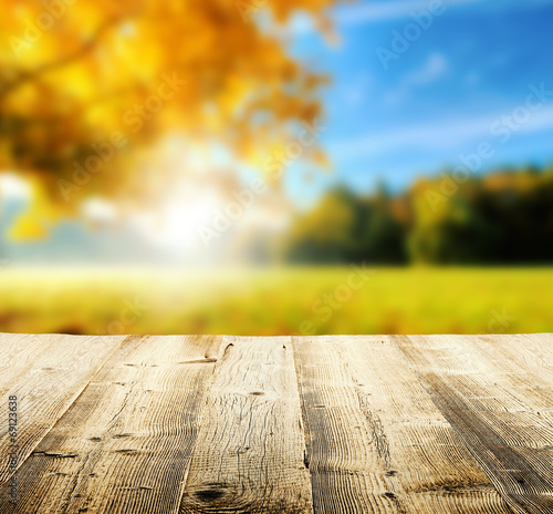 canvas print picture Autumn background with wooden planks