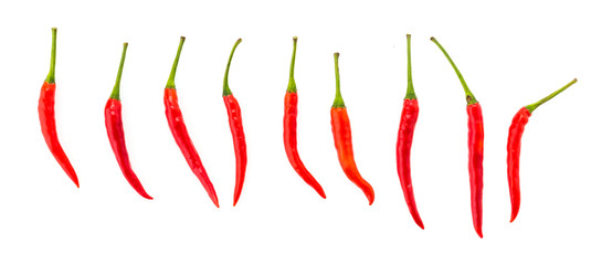 Chilli isolated on white