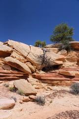 Canyonlands National Park - stone desert landscape of Utah