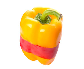 Mix colored bell pepper over white background