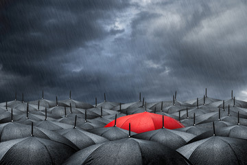 red umbrella concept
