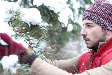 Mann im Winter sucht Tanne aus als Weihnachtsbaum