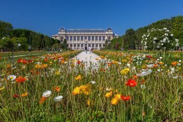 Grande Galerie de l'évolution, Jardin des Plantes, Paris