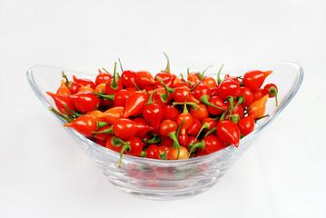 pimenta biquinha 2
