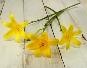 image of three beautiful lilies on a wooden table