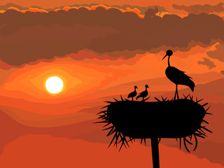 vector Stork with chicks