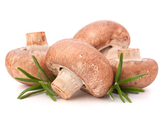 Brown champignon mushroom and rosemary leaves