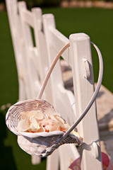 Rose petals in a white basket
