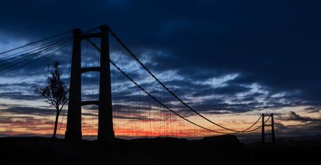 Opiki Bridge Dawn