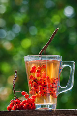 ashberry tea