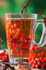 ashberry tea