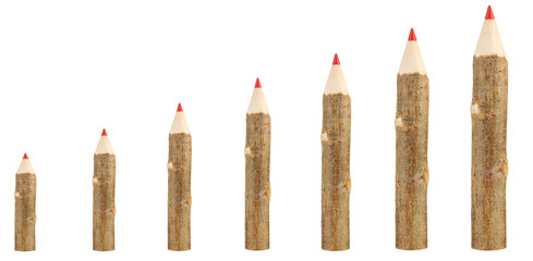 Evolution concept.Colorful wooden pencils isolated on white