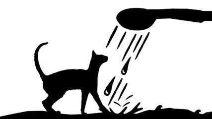 Cats Wash Center - Katzen Wasch-Center - 16 to 9 - g1322