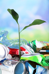Green plant growing among cans on natural background
