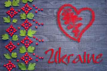Ukrainian pattern of Viburnum