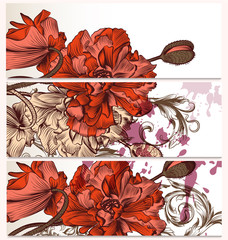 Floral  backgrounds set with poppy flowers