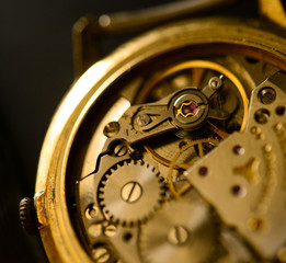 Extreme macro shot of watch mechanism