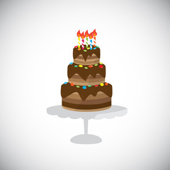 isolate chocolate birthday cake, vector