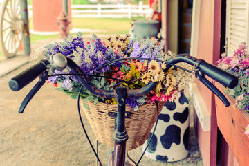 close up basket with flower on bicycle