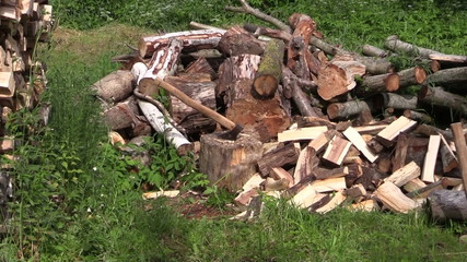 zoom out of axe stuck to stump near to woodpile and  woodshed