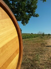 Vineyard and barrel