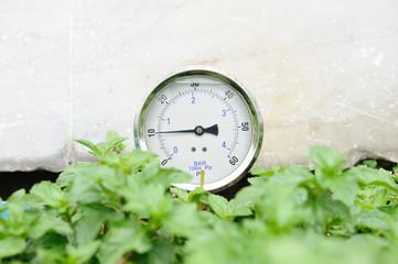 Pressure gauge in bushes.