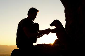 gündoğumu köpek sevgisi