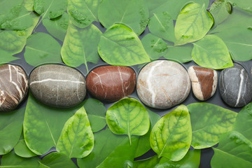 Striped stones and leaves in the water on wet background